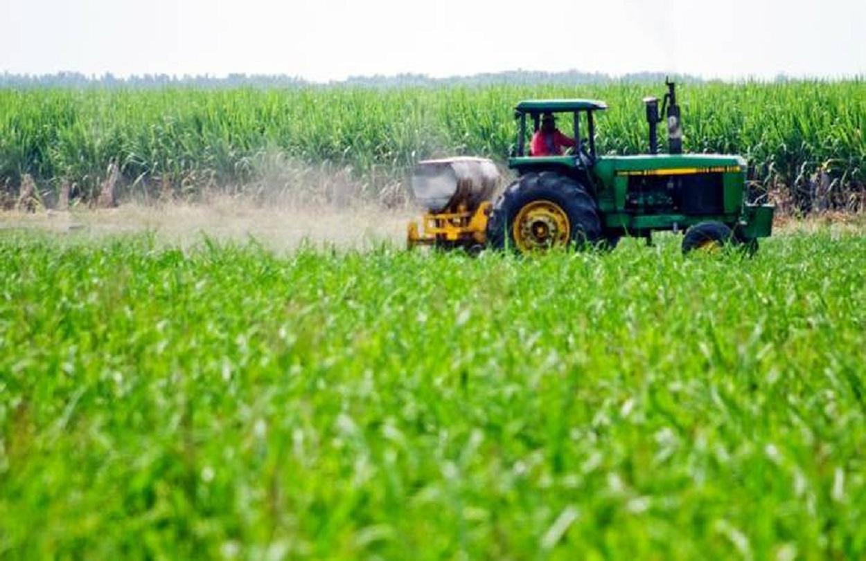 productores-del-campo-en-tamaulipas_0_1_700_435